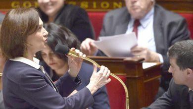 نائبة فرنسية تطالب بالتدخل المباشر في الجزائر