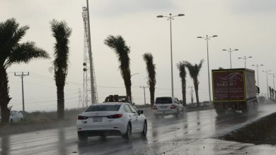 أمطار رعدية بـ 15 ولاية