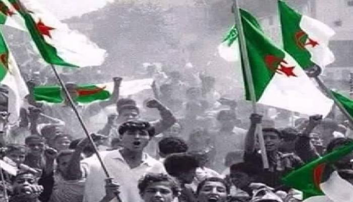 نجوم العرب يهنؤن الجزائر في عيد استقلالها